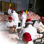 foods_industry_thumb